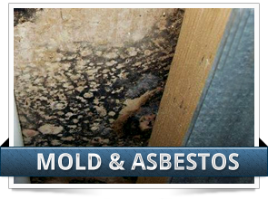 Mold and Asbestos Claim Image